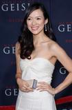 Ziyi Zhang @ 'Memoirs of a Geisha' LA premiere